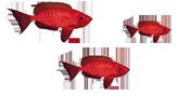 stopka rybki3